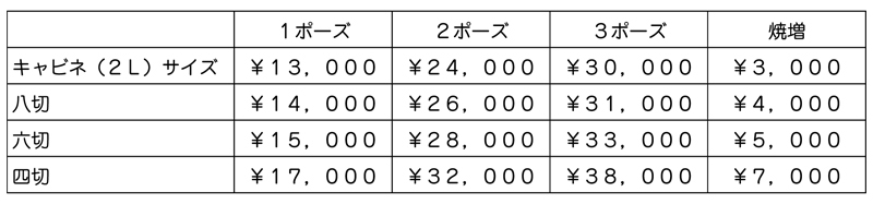 岡山 写真イガラシ 基本撮影 価格表
